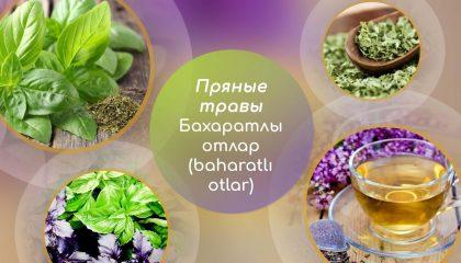 5 главных слов. Пряные травы - бахаратлы отлар (baharatlı otlar)