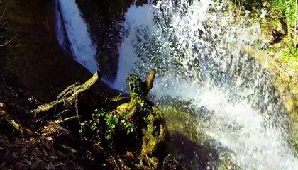 Алака – река с четырьмя названиями