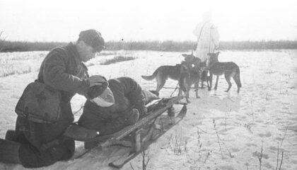 Назим Нафеев: спасал людей при помощи собак